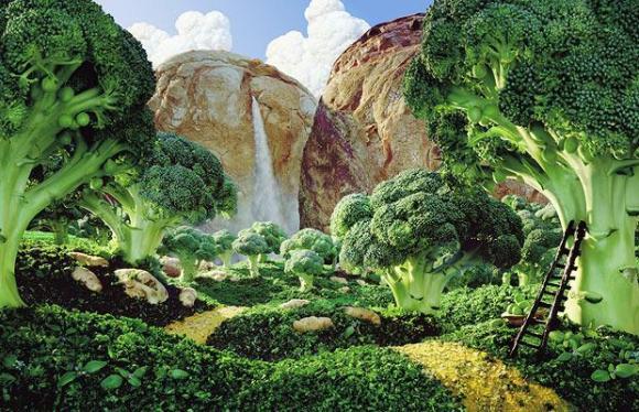 food-broccoli_1120396i1