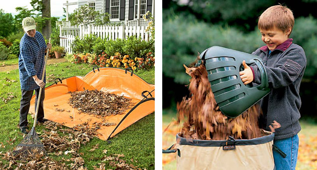 Efficient Way Rake Leaves