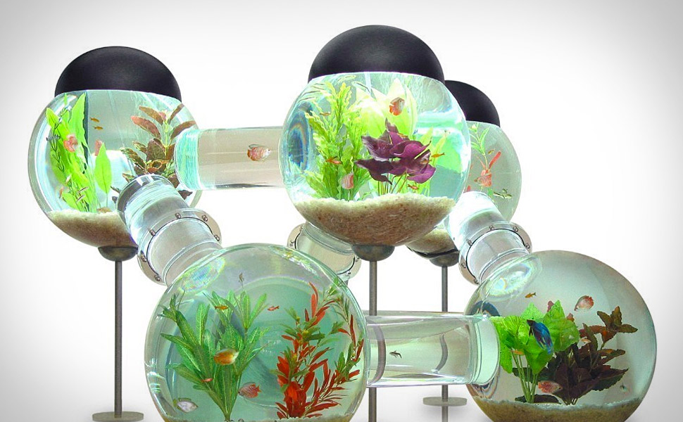 elite coffee table aquarium