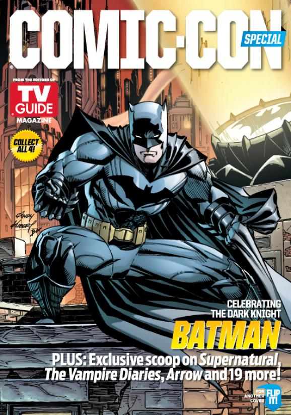 WBSDCC TVGM Cover D-2 Batman