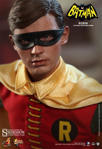 robin detail
