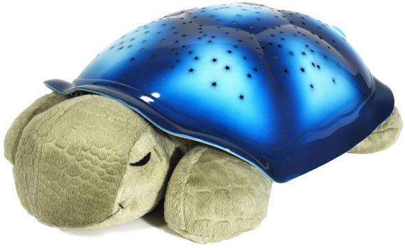Twilight Turtle Tunes