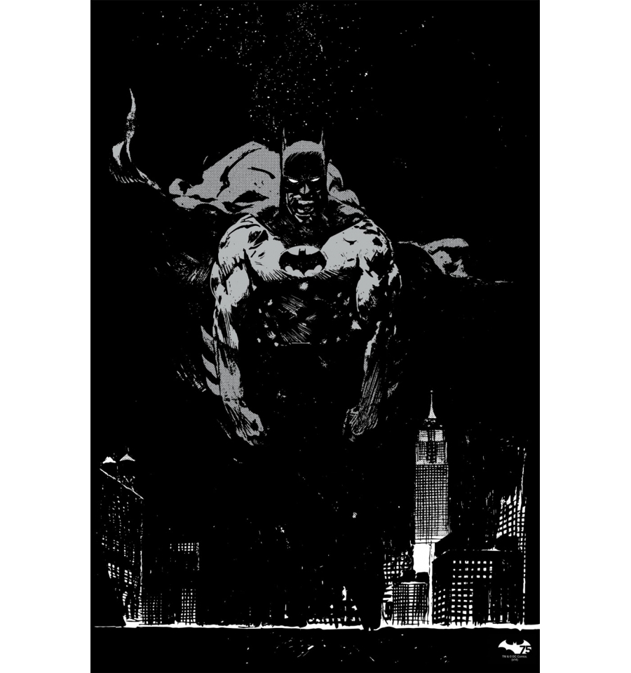 The 2 Color Screen Print Includes Silver Metallic On Black Paper Poster Is A Numbered Edition Of 75 And Will Measure 16 X 24 Officially Licensed By DC